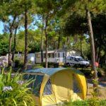 camping-saint-jean-de-monts-emplacement-tente-Le-Tropicana