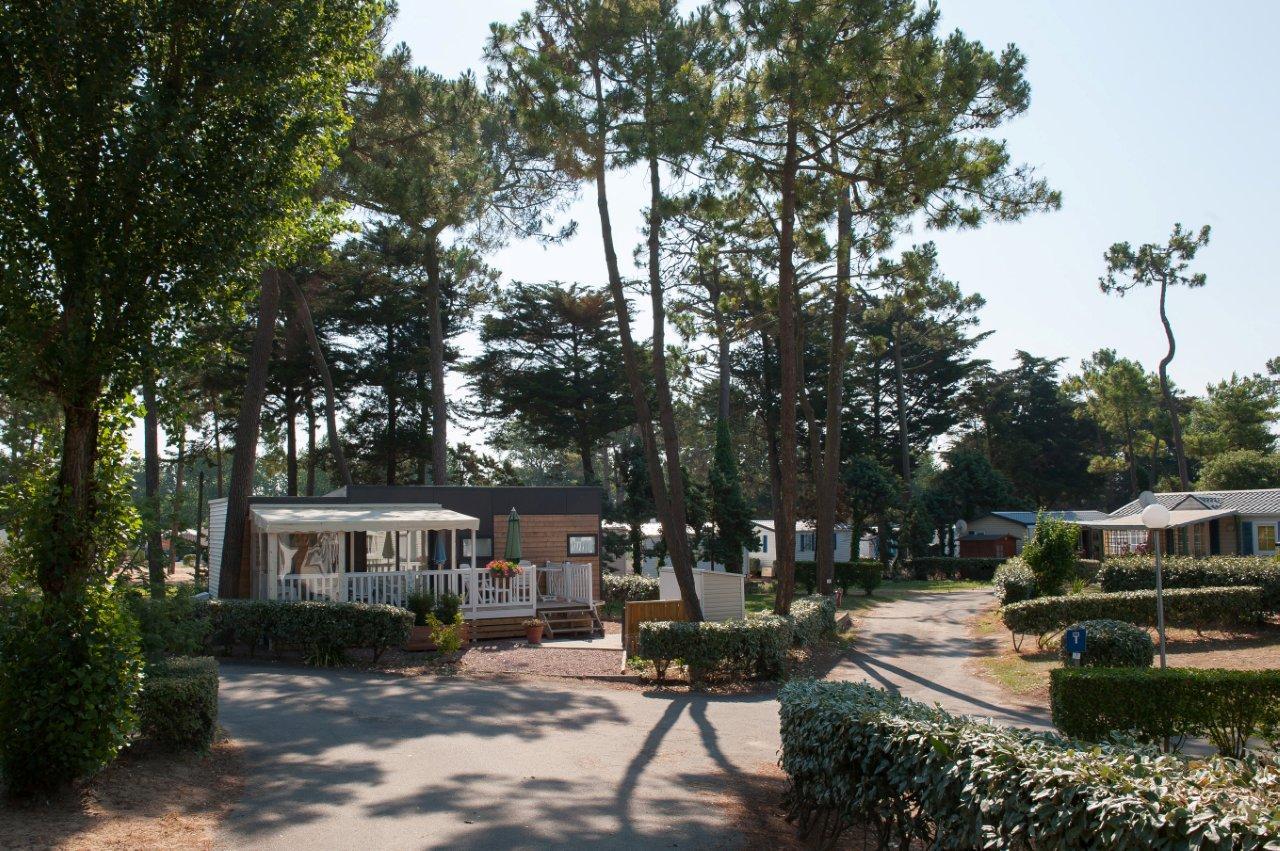 Location-emplacement-camping-car-sous-les-arbres-saint-jean-de-monts-Le-Tropicana